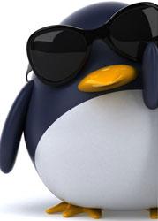Algoritmo Google Penguin - Posicionamiento en Google