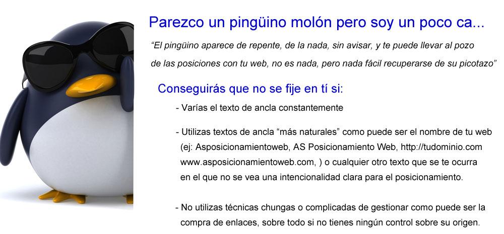 Google Penguin y el posicionamiento web